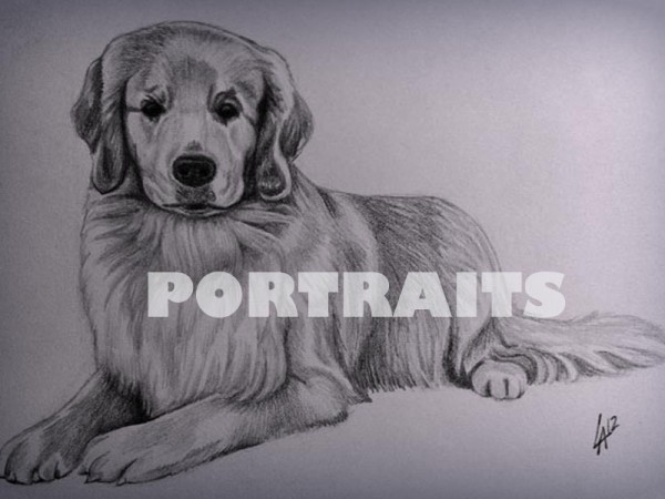 <span>Portrait Art Portfolio</span><i>→</i>